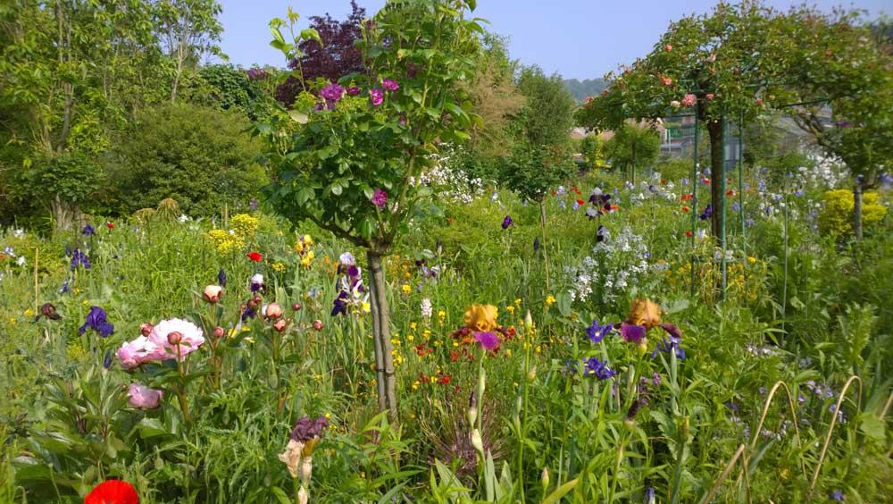Giverny, Garten von Monet 2016